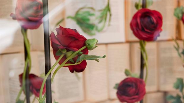 Roses-&-Espelmes