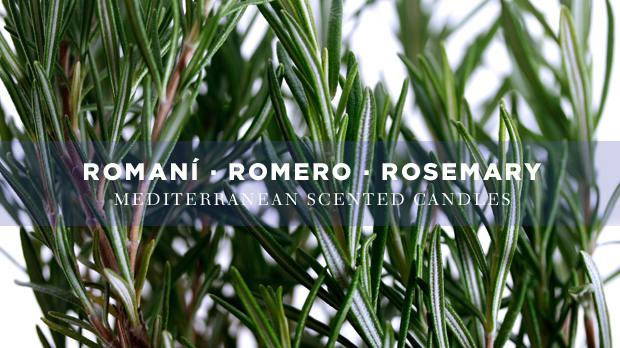 rosemary-scented-candles